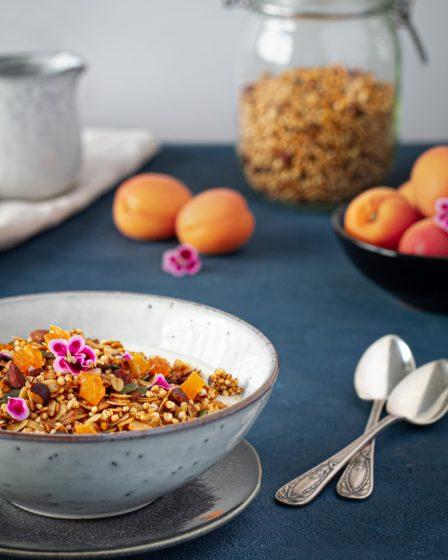 Granola_abricot_healthy_sain_recette_photo_culinaire